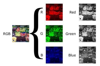 Desglose-de-una-imagen-de-canal-de-tres-colores