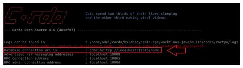 URL de la base de datos de la terminal del nodo