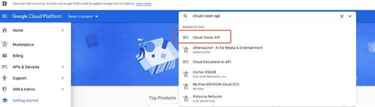 busque la API de visión en la nube